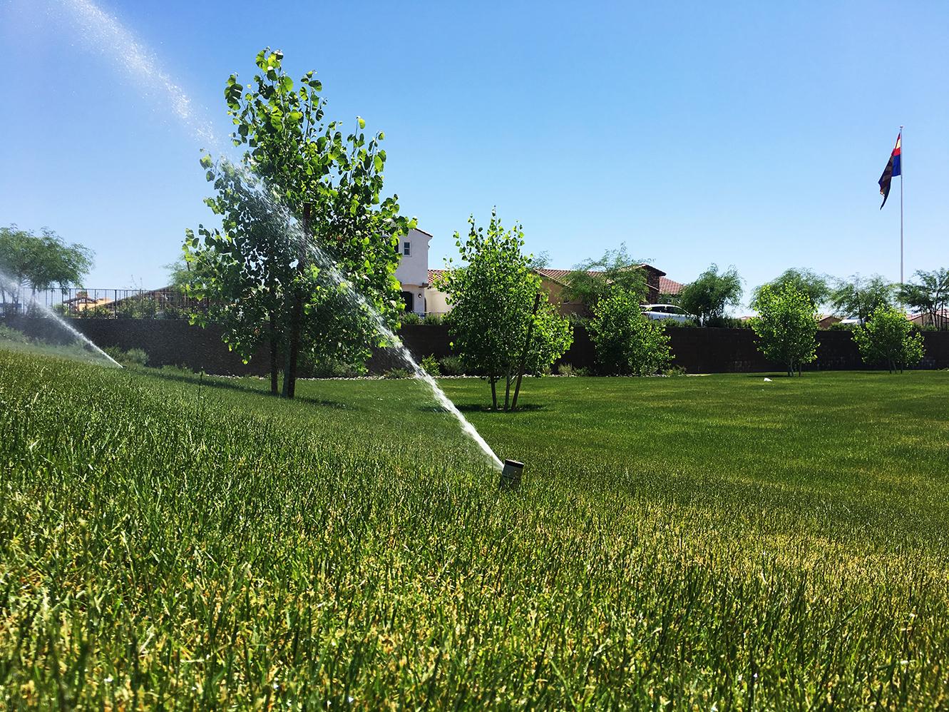 irrigat